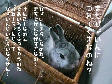 20091205_01.jpg