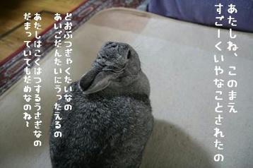 20091208_01.jpg
