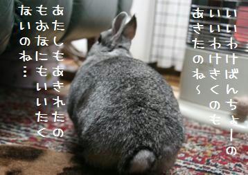20091231_02.jpg