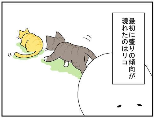 3da900ff.jpg
