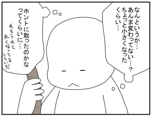 b3092351.jpg