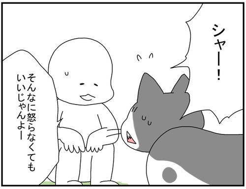 003bb1ce.jpg