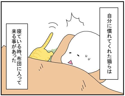6fabbd2e.jpg