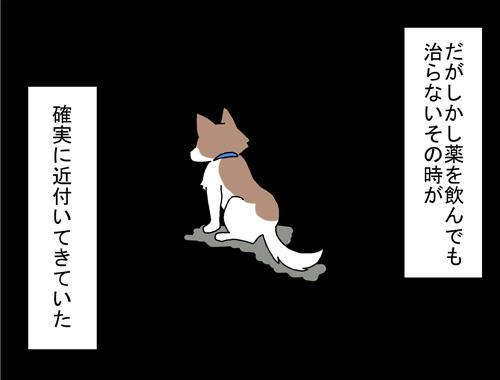 c1fa328d.jpg