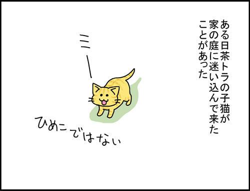 8b831c76.jpeg