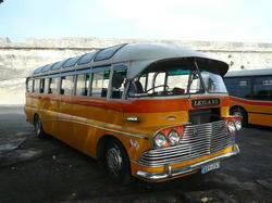 P1220478.JPG