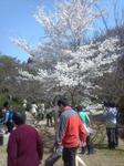 2012-03-31_11-24-00_578.jpg