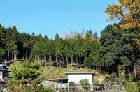 「謎の溝跡」の所在する丘陵地帯
