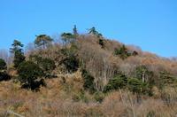 西側からの仲山城遠景