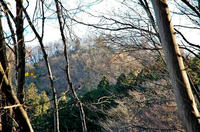 南東からの猪俣城の遠景