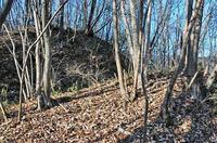 天神山城の東側出郭の堀切