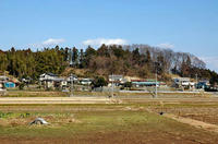 和泉山崎の南側からの遠望