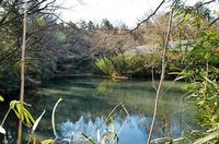 ザルガヤト沼