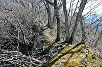 西側から見た「堀切」不要の天然の防御地形