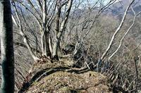 東側から見た「堀切」不要の天然の防御地形