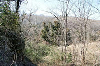 山頂方面と土砂の採掘跡