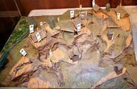 武州松山城の模型