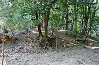 川輪神社境内の塚