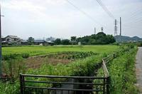 小川堀ノ内付近