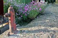 金屋敷付近の消火栓