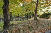 宰相山墓地の盛土