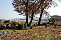 岡部屋敷北西の墓地