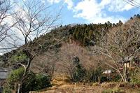 駒留城(まかぶ じょう)