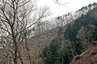 東側稜線の堀切