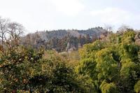 ようやく見つけた「尾ノ窪城」の撮影ポイント