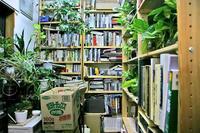 天井までの本棚