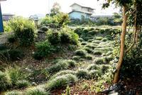 下大塚城北西部の土塁と堀跡