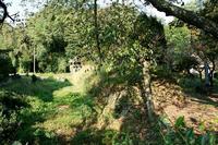 中大塚城南辺東側の土塁と堀跡