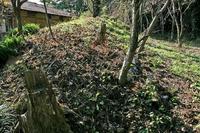 「高の砦」の土塁跡