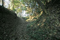 守谷城の堀跡