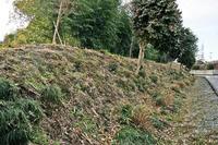 中里城の北側土塁