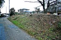 矢田堀城の南側土塁