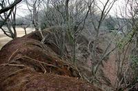 師戸城の土塁