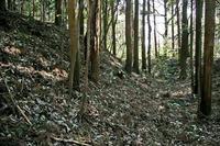 高田山城外郭の土塁と空堀