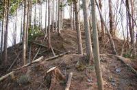 要害山北尾根中間部の堀切