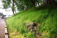山形城の三の丸土塁
