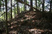 小森城の空堀