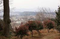 八幡山の砦から俯瞰した内匠城方面