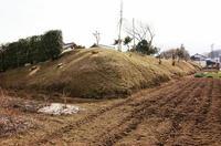 上野屋敷の西側土塁遺構