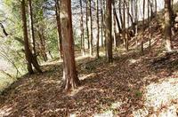 茶臼山の砦