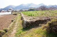 大島下城の石塁