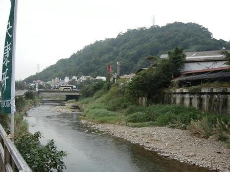 dongwu-2.jpg