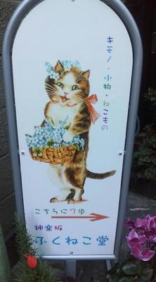 fukunekodou.JPG