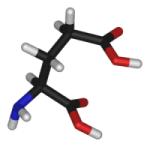 グルタミン酸(3D)