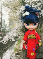 blossom_0211.jpg