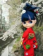 blossom_0411.jpg